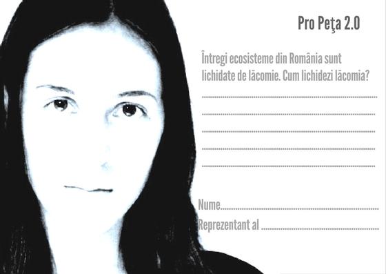 narcisa-postcard