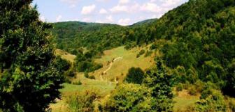 Dealul Cetăţelei