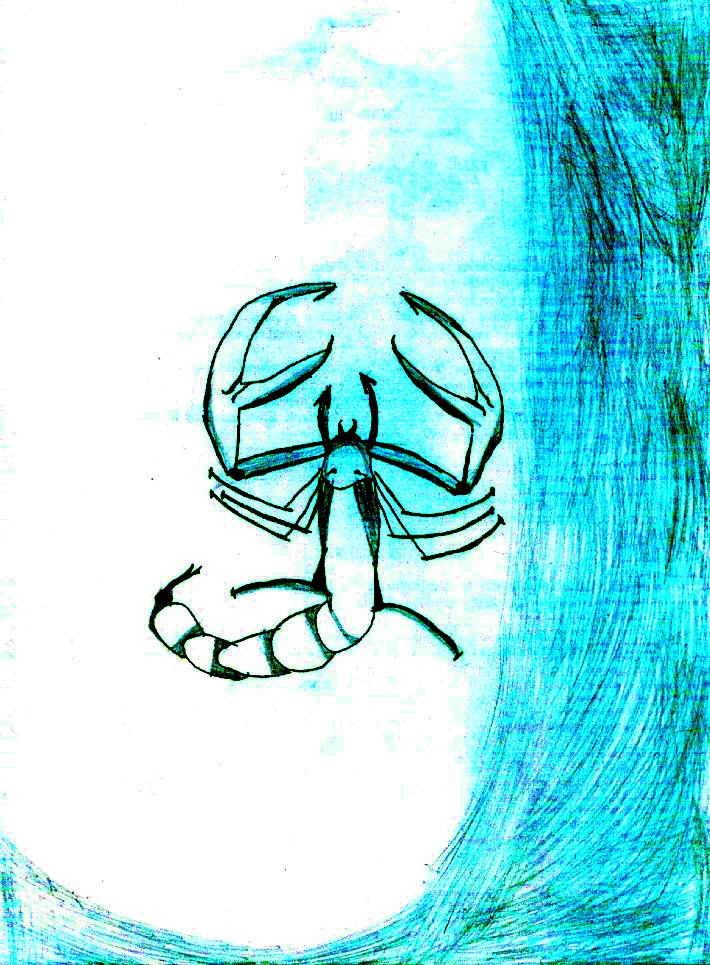 Desen scorpion