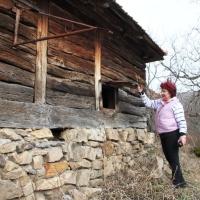 CEZAR NATEA: Muzee dedicate lemnului. AUDIO