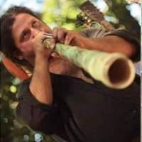 ŢIGAN & FILIMON: Muzică în scorburi de stejar
